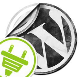Installing Plugins in Wordpress Blogs