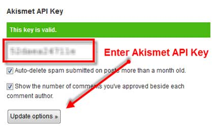 Akismet Activation in Blog