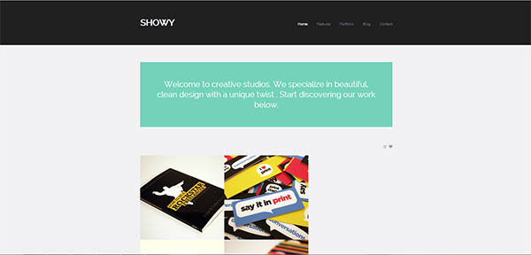 Showy – Bold & Flat Portfolio